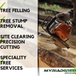 Tree Felling profile image.