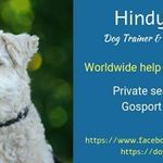 Dog Parenting 101 profile image.