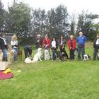 Kath Bell Dog Training