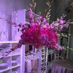 Mel Johnson's Flower Shoppe profile image.