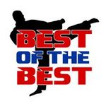 BEST of the BEST Family Martial Arts & Fitness profile image.