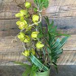 Portland Flower Works profile image.