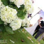 Flawless Impressions LLC Coordinating & Photography profile image.