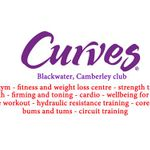 Curves profile image.