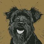 THE DOG & HAIR profile image.