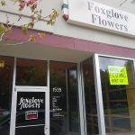 Foxglove Flowers LLC profile image.