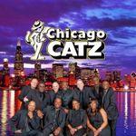 Chicago Catz profile image.