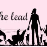 Take the lead profile image.