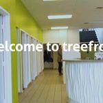 Treefrog profile image.