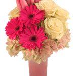 FLOWERS M&G profile image.