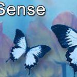 Hypno-Sense profile image.