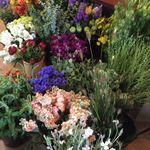 Sellwood Flower Co. profile image.