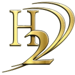 H2 Business Consulting Firm profile image.