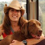 Brown Dog Design profile image.