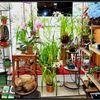 lee's florist & nursery profile image