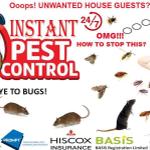 Instant Pest Control Ltd profile image.