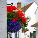 House and Holiday Home Mortgages  profile image.
