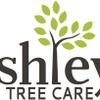 Ashleys Tree Care profile image