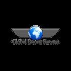 Global Drone Surveys