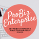 Probizenterprise logo