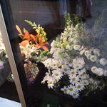 Citrus Valley Florist Inc. profile image.