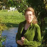 Pauline Bradley, Counsellor profile image.