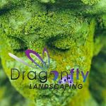 Dragonfly Landscaping profile image.