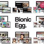 Bionic Egg profile image.