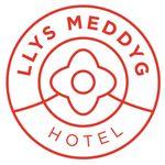 Llys Meddyg profile image.