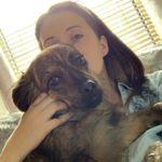 Jemma's Pet Visits, Cat Sitting & Dog Walking Swansea profile image.