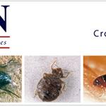 Crown Rail & Environmental Services profile image.