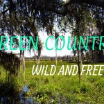 Green Country Wild And Free profile image.