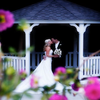 Krystal Gardens Catering profile image