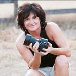 Jeannine Hendrickson Photography profile image.