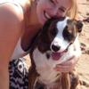 Anna's Ark Pet Care Services profile image