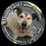 Middle Earth Canine Academy profile image.