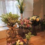 Spring Floral Design profile image.