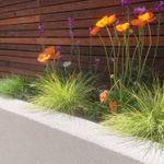 Aura Landscaping profile image.