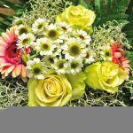 L'enfant florist profile image.
