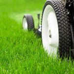 Lawn & Order Northants profile image.