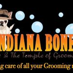 Indiana Bones & the Temple of Groom profile image.