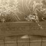 Credence Joinery profile image.