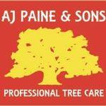 A.J Paine & Sons profile image.