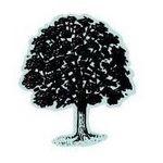 LD Garden Services profile image.