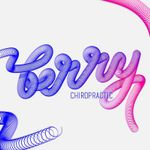 Berry Chiropractic profile image.