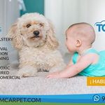Topsteamcarpet profile image.
