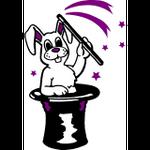 Mr Wiz the Magician profile image.