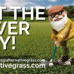 Alternative Grass profile image.