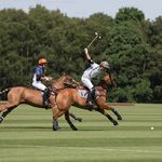 Polo Images Photography profile image.