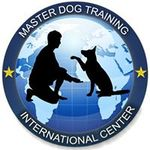 Mater Dog Training profile image.